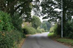 View Along Shenton Lane