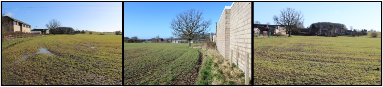 Allocated Site Views
