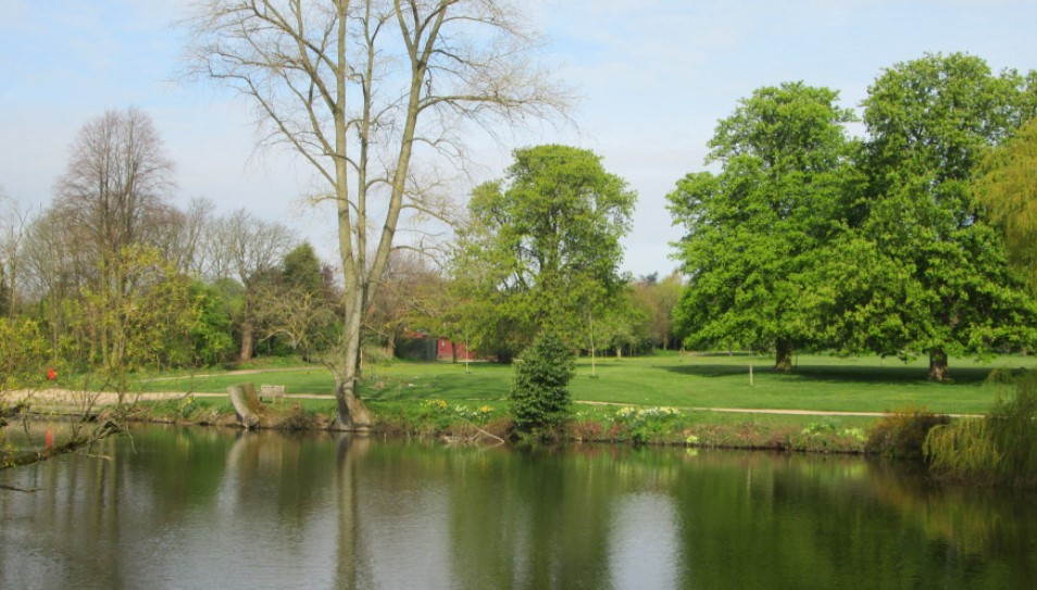 Bow Pool In Bosworth Country Park