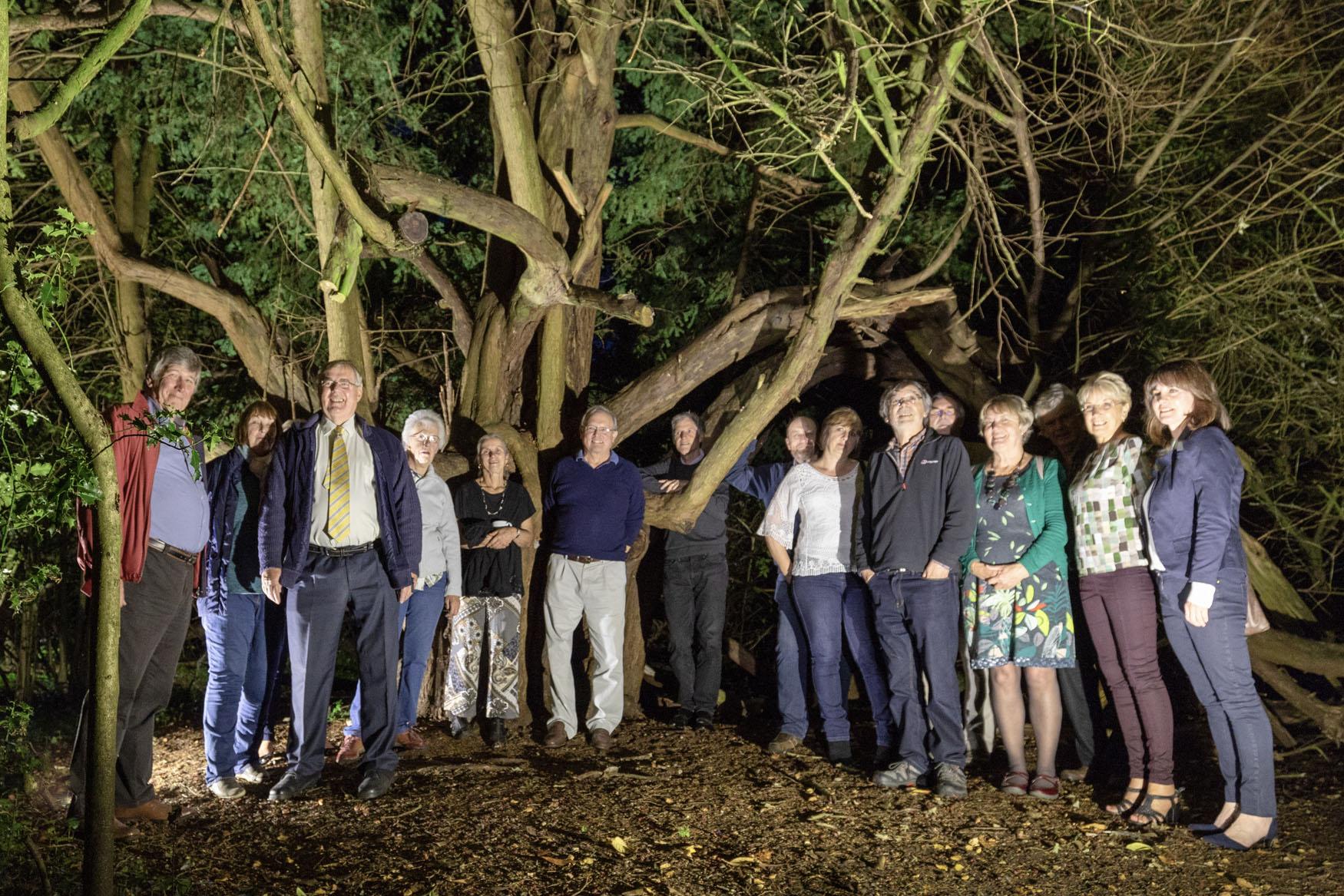 Group At Tree