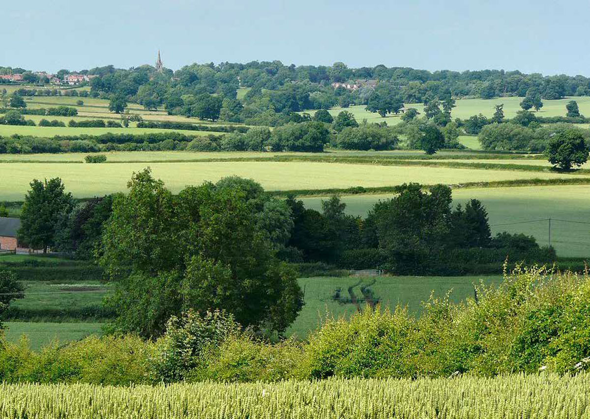Distant View Of Market Bosworth